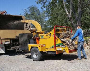 Tree Service Menifee CA